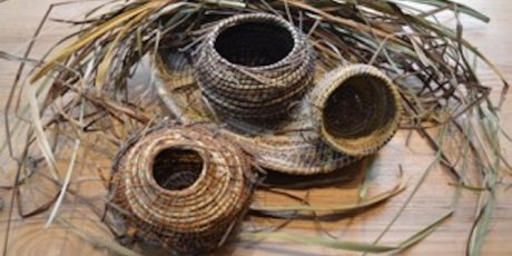 Natural Coiled Basketry with  Julie Rignell