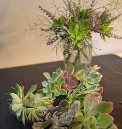 Crafting with Succulents with Fiona Wemyss