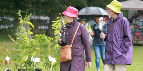 Specialist Plant Fair with the Plant Fair Roadshow
